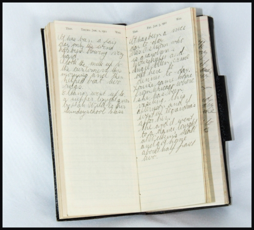 Diary pages from January 2nd and 3rd 1902