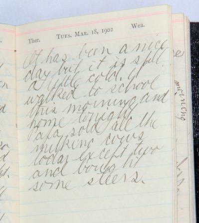 diary page 03-18-1902