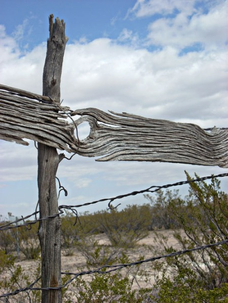 worn fence