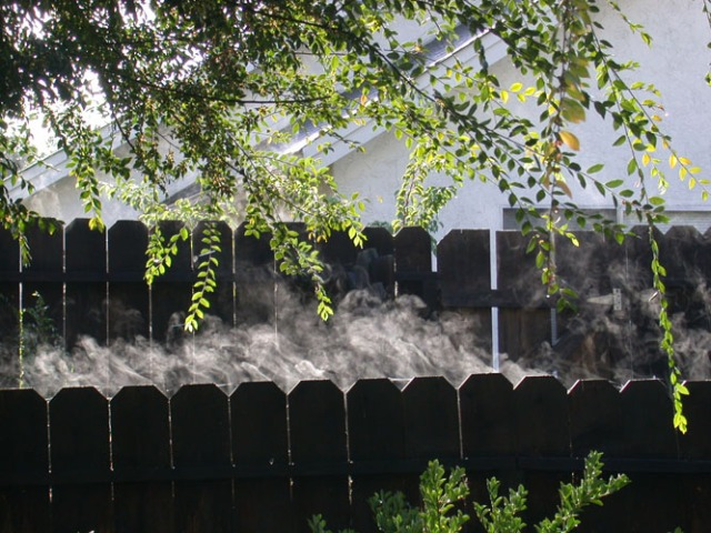 fence steam