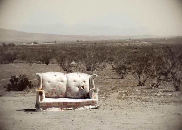 feral sofa 3