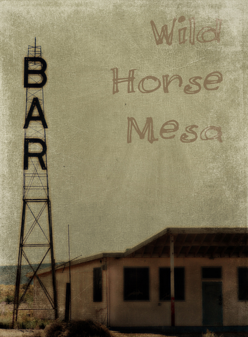 wild horse mesa 2