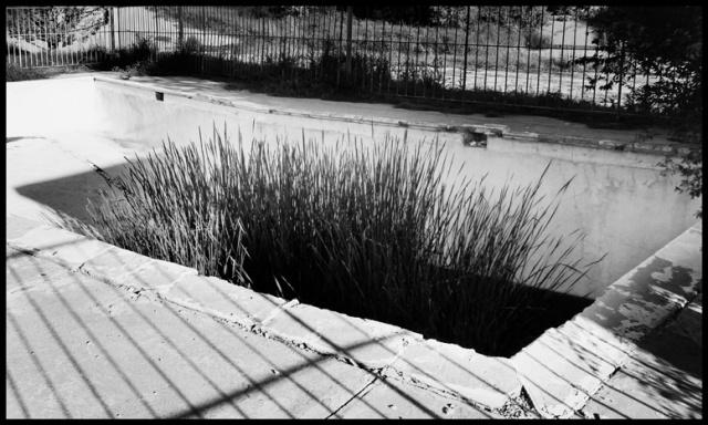 melinda's pool