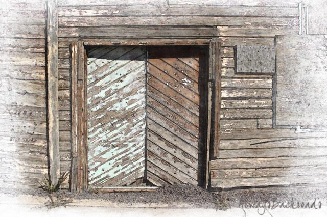 chevron wood door