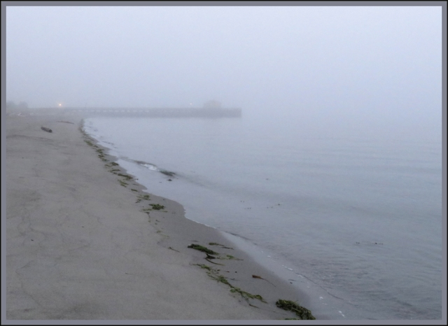 foggy shore