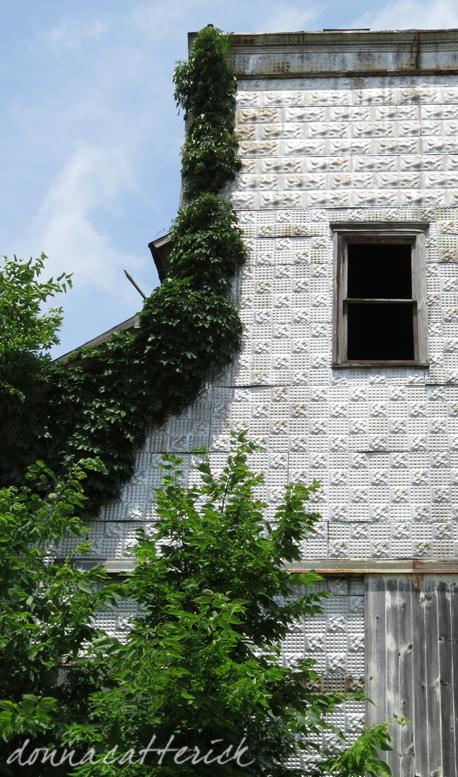 tin tiles plant