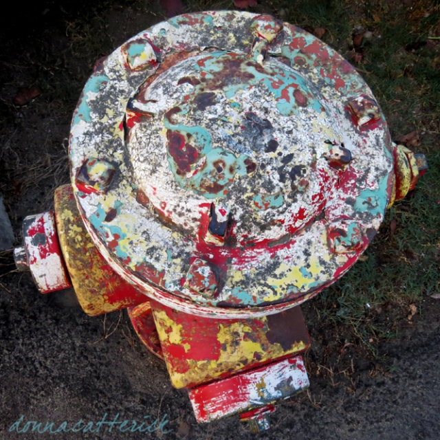 hydrant color