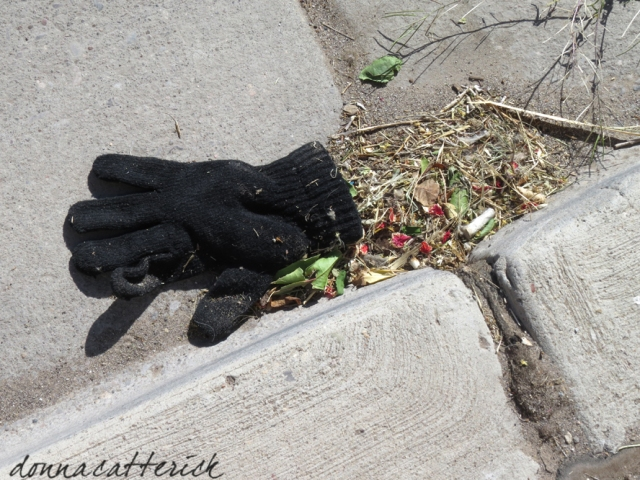 lost glove knitted