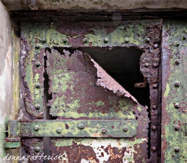 delicate rust