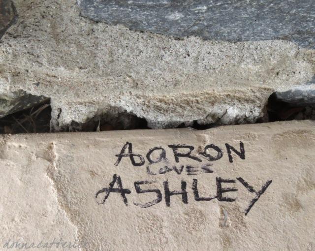 aaron-ashley