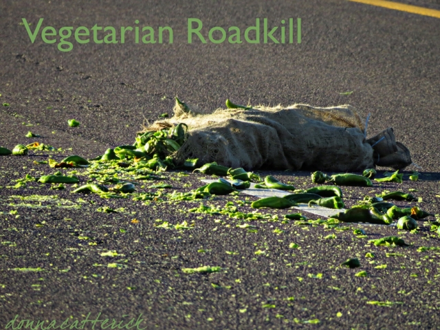 veg-roadkill